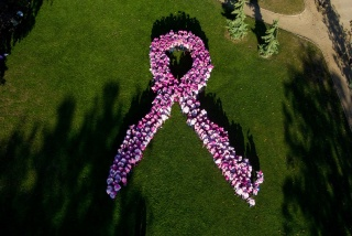 logo-ruban-rose-cancer-sein